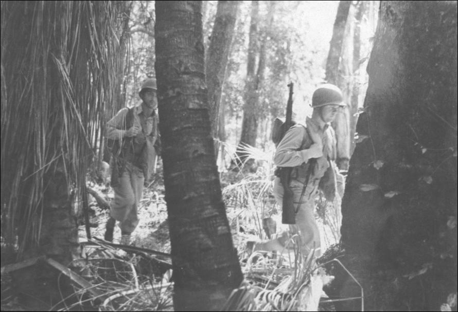 New Guinea Soldiers